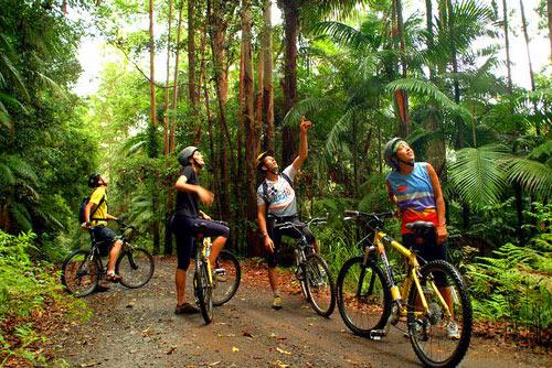 Biking Tours In Costa Rica