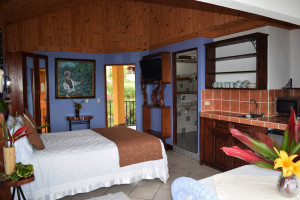 Mountain Suite Guayabo Lodge