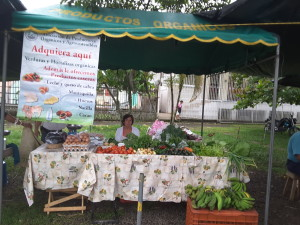 Visual and aroma therapy: organic vegetable stand on the market in Turrialba