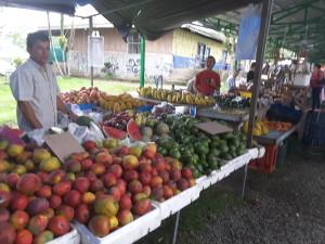 Saturady Moning Sunshine: mangoes, watermelon, avocadoes