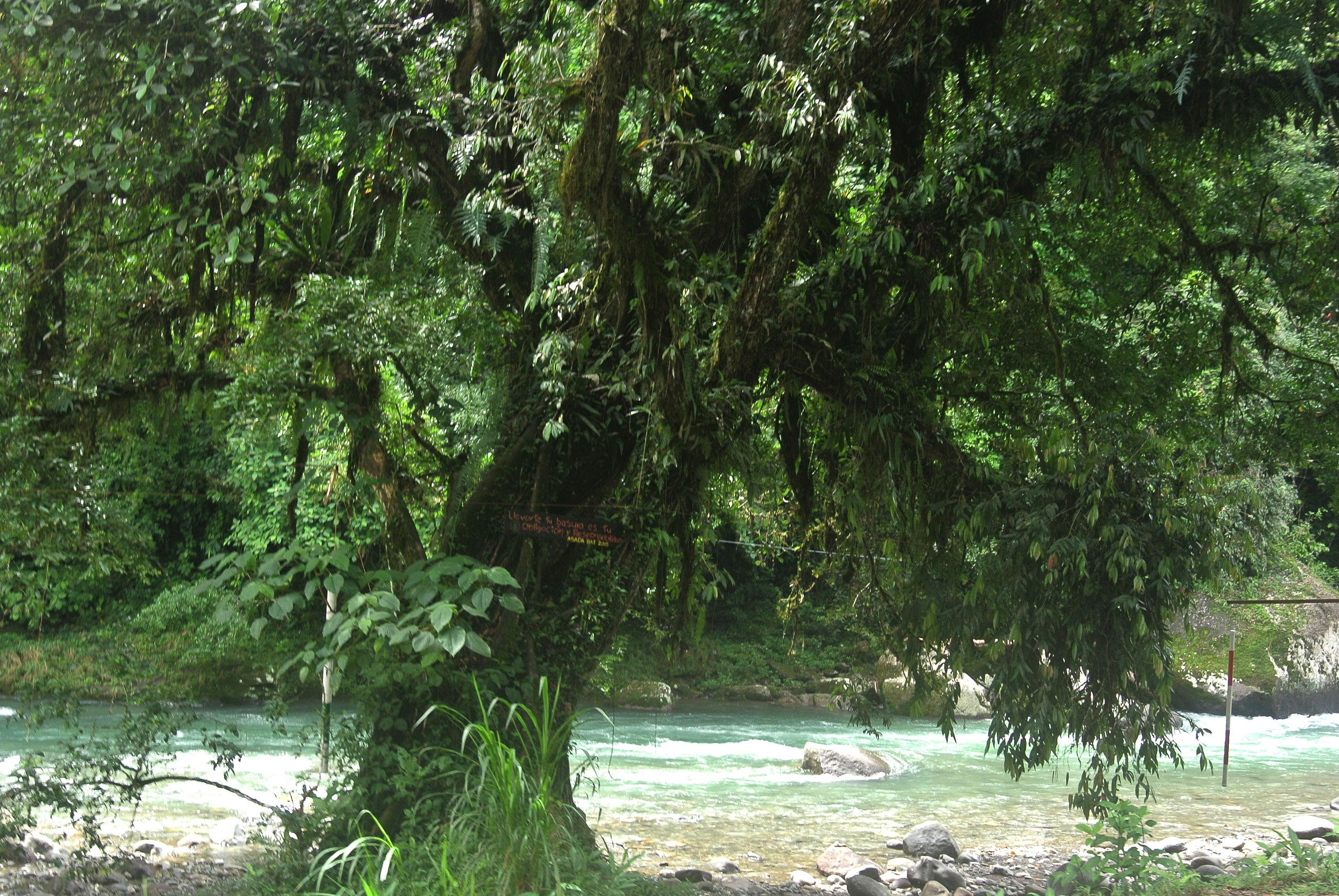 Rio Pejiballe, Turrialba valley